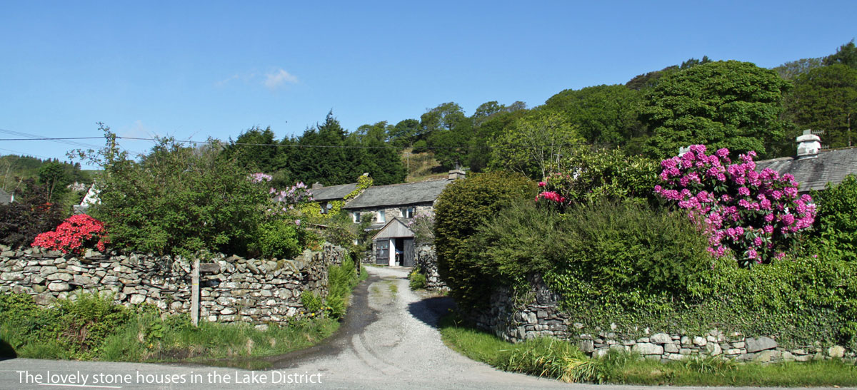 Pet Friendly Holiday Lets In England Self Catering