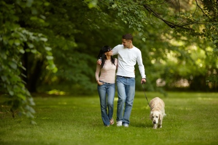 dog and pet friendly  holiday lets for couples sleep 2