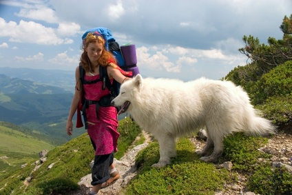 walking holiday with your dog